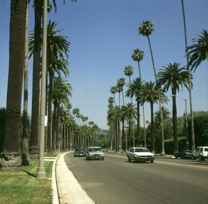 L:A: Hollywood 1986
